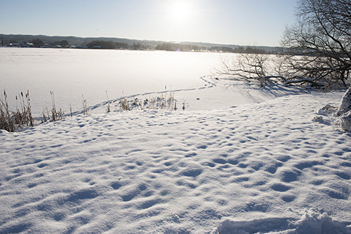 Snowy landscape, sun on an icy lake